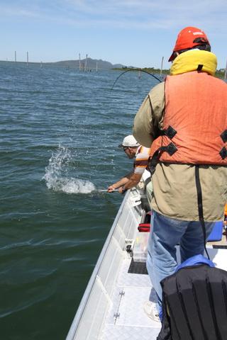 peixe_2010_03.JPG