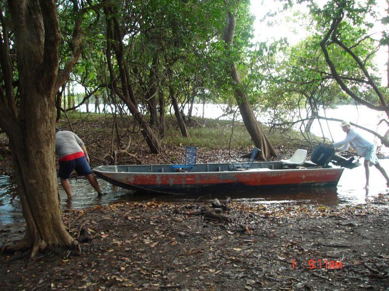 Caminho para Lago De Pesca De Tucunaré   3
