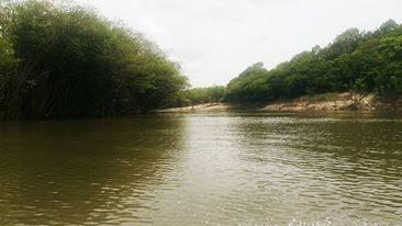 paisagem Rio preto Out 2015