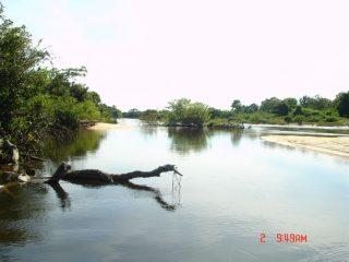 Pescaria Em Goias   Rio Cristalino E Araquaia De 03 A  (138)