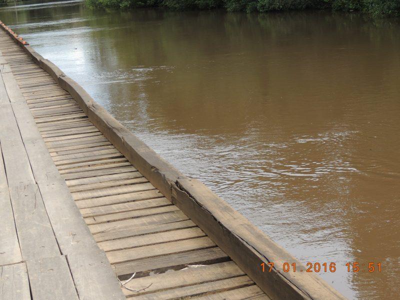 enchente no pantanal 024.JPG