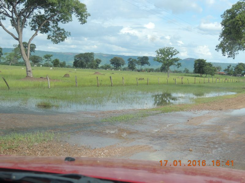 enchente no pantanal 050.JPG
