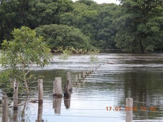 enchente no pantanal 007.JPG