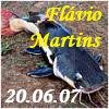 1663577233_2007-Jun-FlvioMartins.jpg.444d0d676ed277dc4d93a86e37972ba0.jpg