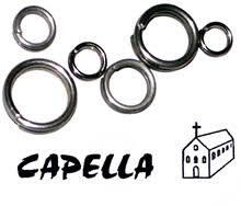 219925648_Capella1.jpg.b227bf8cd62723361619767db21092be.jpg