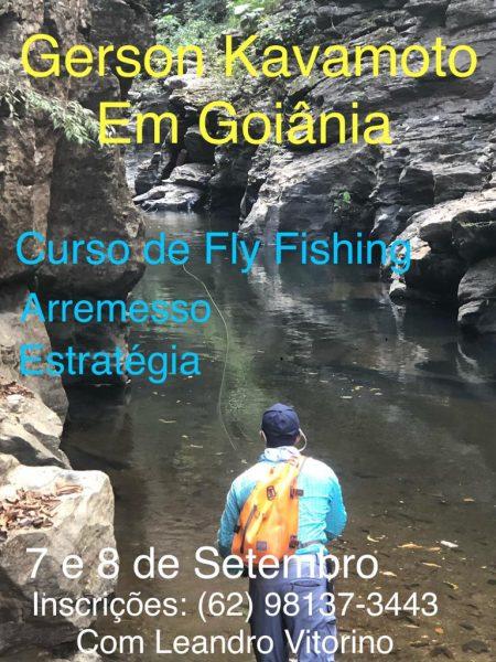 curso_fly.JPG